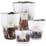 Nouvelle collection de bougies Baobab